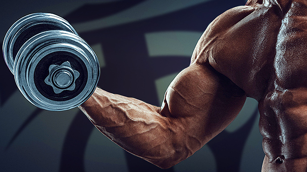 The-10-best-biceps-training-tips