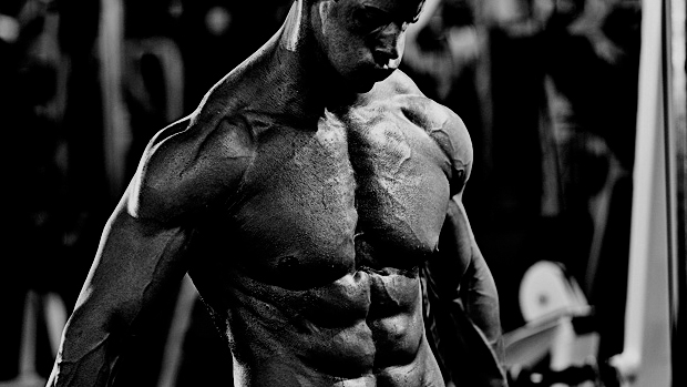 Shredded-in-six-days