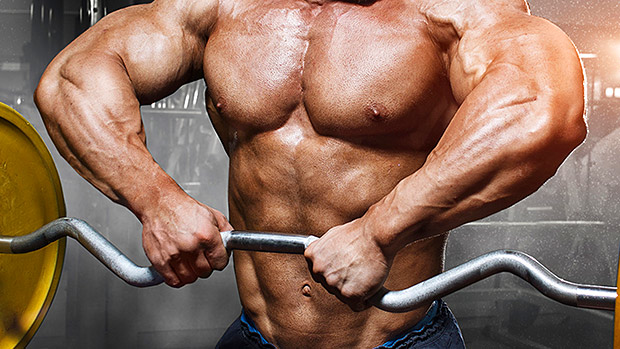 The-truth-about-muscle-gain-metabolism