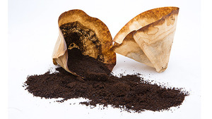 Eat-used-coffee-grounds-and-lose-fat