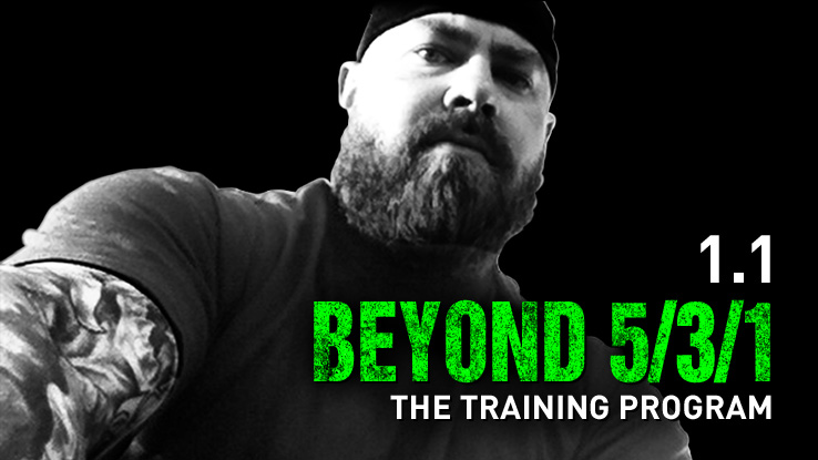 jim wendler 5 3 1 book pdf