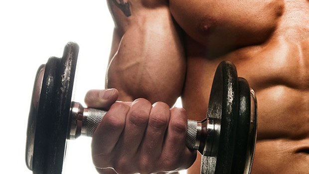 The-7-day-biceps-cure