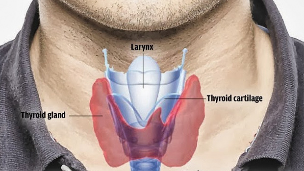 Tip-get-enough-iodine-for-thyroid-health