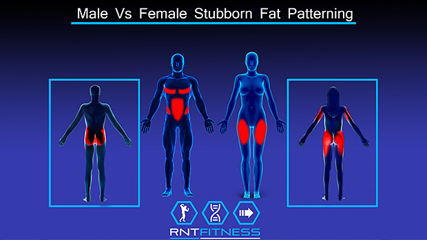Stubborn Fat